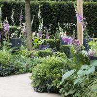 Chelsea show garden